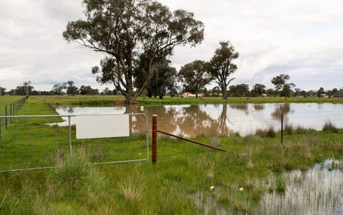 Lot 4 Olympic Highway, Culcairn NSW 2660