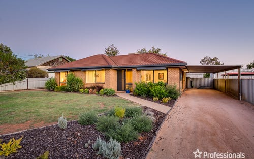 40 Armstrong Av, Wentworth NSW 2648