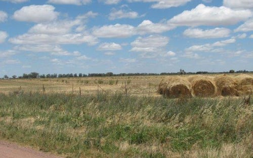 Lot 144, Farm 406 Saunderson Road, Leeton NSW 2705