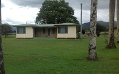 4738 Mackay Eungella Road, Finch+Hatton QLD