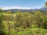 76 Bald Mountain Road, Limpinwood NSW