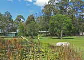 115 Hazelmount Lane, Tuckurimba NSW