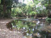 1426 Thorogood Road, Kelsey Creek QLD