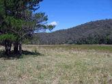 Lot 11 Wheeny Creek, Colo NSW