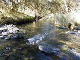 6456 Gwydir Highway, Cangai NSW