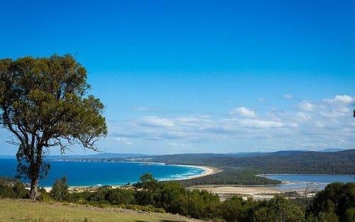 223 Turingal Head Road, Wallagoot NSW