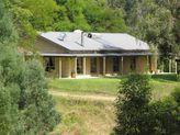 2598 Nowendoc Road, Knorrit Flat NSW
