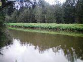 187 Webbs Creek Road, Webbs Creek NSW