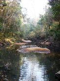 Lot 56 Sportsman Creek Conservation Area, Dilkoon NSW